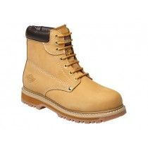 Dickies Cleveland Honey Safety Boots