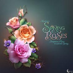 """Moonbeam's ~ """"Spring Roses"""" ~ moonbeam1212."""