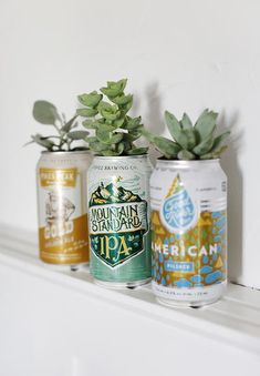 DIY Beer Can Planters - The Merrythought themerrythought. DIY Beer Can Planters - The Merrythoug Beer Bottle Crafts, Craft Beer, Beer Bottles, Beer Can Art, Flower Power, Diy Projects For Couples, Cactus E Suculentas, Beer Decorations, Recycling