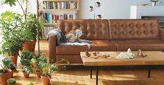 "Reverie 2 Seat Leather Sofa 78"" 2399"