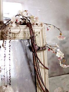 ♕ mirror and blossom by Debi Treloar