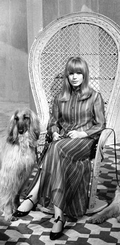 Miss Marianne Faithfull hounds the chair with her 2 Afghans (the most popular dog of the Sixties in Melbourne I can tell you).
