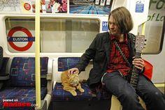 運命の出会い…1人のホームレスの人生を救った1匹の猫の物語 - ペット日和