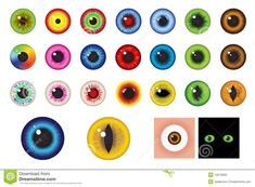 Multicolored Eyes - Design Elements. Vector Stock Vector - Image: 13573830