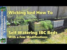 Self watering Wicking bed, IBC beds with a few modifications Hi folks. This clip shows a few modifications I've been making to the IBC wicking beds when cons. Aquaponics System, Hydroponics, Hydroponic Gardening, Wicking Garden Bed, Wicking Beds, Backyard Aquaponics, Backyard Farming, Raised Flower Beds, Raised Garden Beds