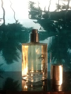#biehl #biehlparfumkunstwerke #nicheperfume #niche #houseofniche #newperfume
