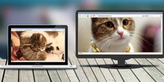 How To Make a WiFi Network That Only Transmits Cat Pictures With A Raspberry Pi.