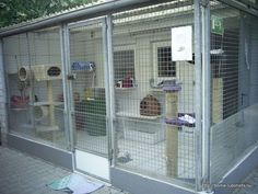 Cat Care Keeping Your Cat Healthy and Your Home Clean Outdoor Cat Cage, Outdoor Cat Enclosure, Cat Playhouse, Cat Kennel, Cat Cages, Cat Run, Dog Hotel, Cat Playground, Pet Door