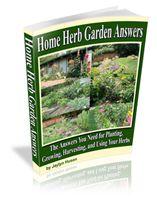 Herb Gardening for Beginners - an Italian Herb Garden