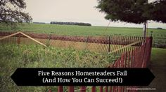 Living Life in Rural Iowa: Five Reasons Homesteaders Fail (And How You Can Succeed!)