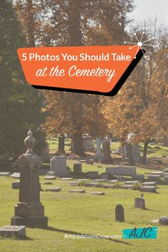 5 Photos You Should Take at the Cemetery - Amy Johnson Crow Free Genealogy Sites, Genealogy Research, Family Genealogy, Genealogy Humor, Genealogy Chart, Family Reunion Games, Family Games, Family Reunions, Group Games