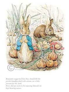 Benjamin & Peter with onions by Beatrix Potter. Available from Artworx Gallery Shropshire UK. www.artworx.co.uk