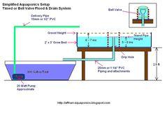 Aquaponia de Affnan: Criação de um sistema de aquaponia Simples