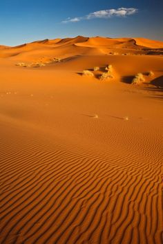 Sahara desert in Tunisia