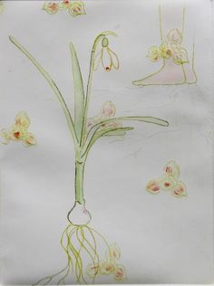"""""""Spring"""", etching, Charlotte Donkers"""