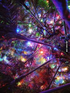 Took a picture under my christmas tree turn out pretty damn good!