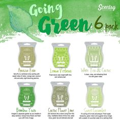 "Scentsy ""Going Green"" fragrance 6 pack for spring and summer 2016 #amazonrain #lemonverbena #whiteteacactus #bambooyuzu #cactusflowerlime #sweetcucumber #scentsbykris"