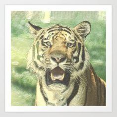Tiger Art, Buy Metal, Buy Frames, Printing Process, Gallery Wall, Art Prints, Animals, Art Impressions, Animales