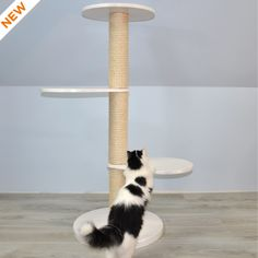 Scandinvian Design Basic Cat Tree in White – Cat's Cozy Space Liming Wax, Sisal Rope, White Chalk Paint, White Cats, Cat Tree, Pet Store, Natural Materials, Scandinavian Design, Solid Wood