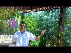 EnviroscapeLA Founder Mike Garcia show and describes the elements that make up the sustainable landscape. You can have a gorgeous backyard an keep it alive with a fraction of the water used by a typical yard. Landscape Solutions, Backyard Paradise, Best Places To Live, Sustainable Development, Flower Gardening, Backyard Projects, Edible Garden, Growing Flowers, Permaculture