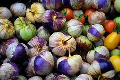 I hate to admit this but I don't think I've ever purchased a tomatillo from the supermarket. And up until recently, I've probably eaten sa...