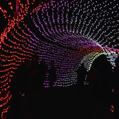 Immersive Nature Art Projections Emerge on Megaliths in a Japanese Bath House Outdoor Christmas Light Displays, Christmas Lights, Christmas Games, Winter Christmas, Wedding Entrance, Entrance Decor, Neon Light Art, Zoo Lights, Light Tunnel