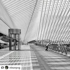On est tellement heureux de débarquer à Liège ! #Repost @nikonpvg with @repostapp  #photo_blackwhite #zwartwitfotografie_nl  #blackandwhite  #blackandwhitephotography  #instablackandwhite  #inst_bw #luik #bw_photooftheday  #bw_lover #bw_crew  #bwstyles_gf  #trainstation #photography #instamood #picoftheday #digitalart #calatrava #modern #black #white #architecture #shape #wideangle #!station #curves #curved #liege #clouds #travel #traveller
