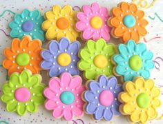 summer decorated cookies - Google Search