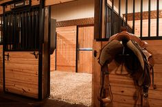 Would be so nice to have a saddle rack by your stall... ah dreams are good for the soul
