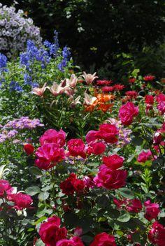 How does your (creative) garden grow?