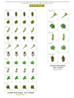 Plant-A-Grams