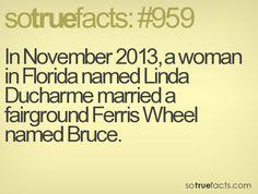 SoTrueFacts.com - Fact: #959