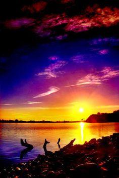 Evening Sun ~ Dreamy Nature