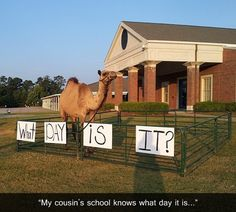 """Lol my friends and I did this in middle school. One person shouts """"what day is it?"""" And the whole hallway of about 300 kids screams """"HUMP DAY!!!!!!!"""""""