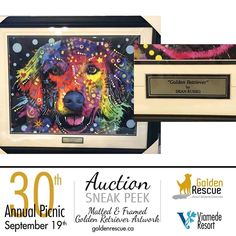 Dean Russo, Picnic Mat, 30th Anniversary, Rescue Dogs, Auction, Facebook, Amazing, Frame, Check
