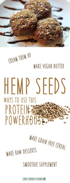 Hemp isn't just for smoothies and protein shakes - check out all these amazing ways to give the seeds a new spin in your kitchen. Hemp Recipe, Diet Recipes, Vegan Recipes, Food Hacks, Food Tips, Vegan News, Sweet Pastries, Gluten Free Treats, Vegan Vegetarian