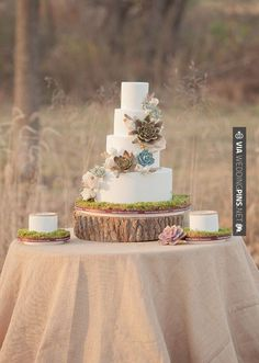 So cool - Succulent wedding cake  | photo by Millie Batista |