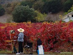 Painter at Sonoma Coast
