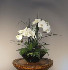 This silk orchid arrangement is a ...