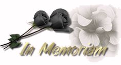 Condolences, Grief, Heavenly, Bobby Pins, Poems, Hair Accessories, Stars, Poetry, Hairpin