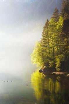 Misty Lake by Davide Arizzi on 500px