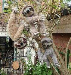 The bestway to successfully recite the teasingly tongue twister-ish title of this blog post is really ratherslowly. Obviously the sloths have no problem whatsoever with that. These three, Three T…