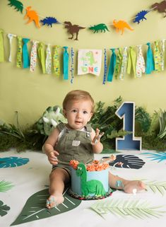diy birthday gifts for him Dinosaur First Birthday, Boys First Birthday Party Ideas, 1st Birthday Pictures, Kids Birthday Themes, 1st Boy Birthday, Boy Birthday Parties, Bebe 1 An, Die Dinos Baby, Cake Smash Outfit