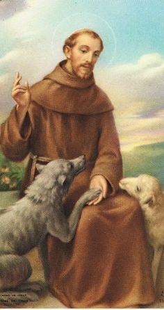 São Francisco, Santos Padroeiros, Santos Católicos, Pintura De Jesus,  Cartões De Oração e7ffe23e5c