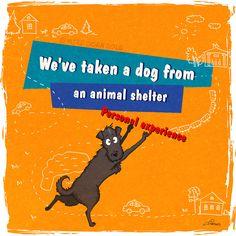 """""""Abbiamo preso un cane da un rifugio per animali. Esperienza personale.""""  Bird Born Illustration"""