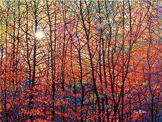 """""""Autumn Sunburst"""" Giclée Canvas Edition Canvas size 30"""" x 40"""" 50 s/n $995.00 cdn   Canvas Size 36"""" x 48"""""""