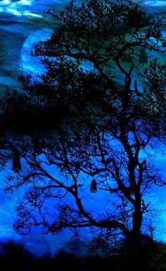 Blue Moon - Bats In Waiting