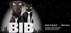 This year, we're back with Back in Black 2. Our goal is to find good homes for 1,000 or more pets in black this May. Right now, thousands of wonderful animals are waiting to be adopted at shelters and rescue groups nationwide. And every day, 9,000 pets are killed in shelters because they don't have a home. Best Friends and our No More Homeless Pets® Network Partners are committed to saving them. Join us!
