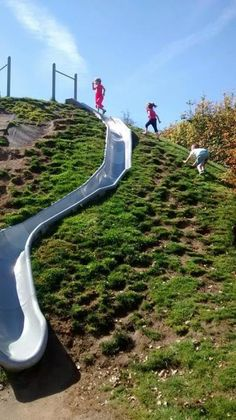 Ok- summit park in issaquah! I want to go! It has slides built into the side of the hill  Amazing!