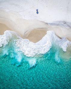 Salty wings , Albany, Western Australia